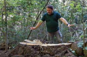 Petíció indult azért, hogy Mihai Goțiu legyen a környezetvédelmi õrszolgálat vezetõje