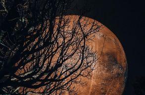 Megérkezett a Mars Kolozsvárra, és egybõl le is havazott rá