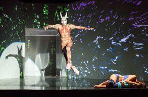 A sepsiszentgyörgyi színház az Alice-t vetíti szombaton, a színház világnapján