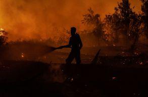 Kigyulladt Indonézia egyik legnagyobb olajfinomítója, 950 személyt evakuáltak