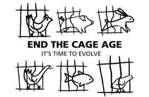 Premier: az állatok jogait védõ polgári kezdeményezés esetében jogalkotásról döntött az Európai Bizottság