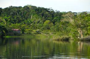 """Az amazonasi õslakosoknak is van """"erdõradarjuk"""" - és valamennyire mûködik"""