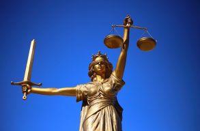 Stelian Ion: az alkotmánybíróság ismét lesújtott a korrupció és szervezett bûnözés elleni harcra
