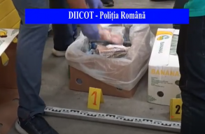Fél tonnányi kokaint rejtettek a banánszállítmányba, ami egészen Bukarestig eljutott