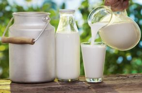A tejb�l is meg�rthat a sok