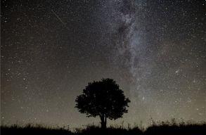 Nézz hullócsillagokat: ilyen volt a Perseida meteorraj tetõzése (videó)