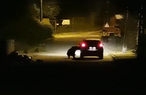 Videó: anyamedve támadt egy vacsorát megzavaró autóra Prahova megyében