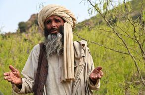 A tálibok betiltják a zenét