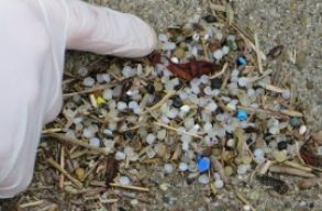 Cseppet sem k�rnyezetbar�t a biodegrad�bilis m�anyag