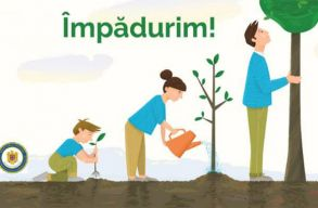 Jó tetteket ültetnek a Hargita megyei Homoródalmáson: õshonos fafajtákkal erdõsítenek