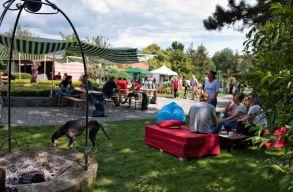 Bor, mámor, Bénye: fesztivál az erdõbényei kertekben