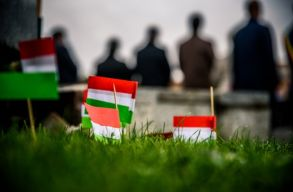 Az õshonos kisebbségekrõl szóló állásfoglalást fogadott el az Európai Parlament