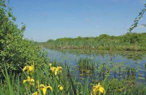 Sürgõsségi kormányrendelettel rúgták ki a civileket a természetvédelmi területek gondnokságából