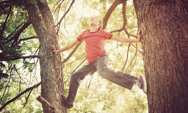 boldog gyerekkor Transindex   Herédi Zsolt   Boldog gyerekkor: agyonszabályozott  boldog gyerekkor